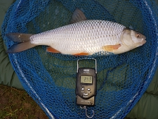 2lbs7 Caught by Mark Waring