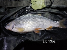 2lbs13 Caught by Pete H